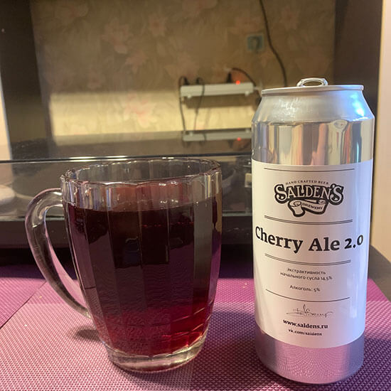 Salden's Cherry Ale 2.0